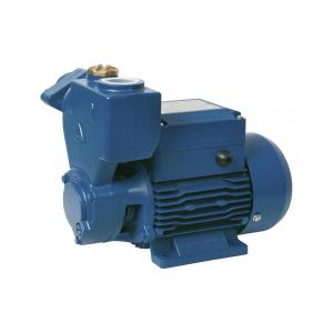 Self-priming Perpheral Pumps